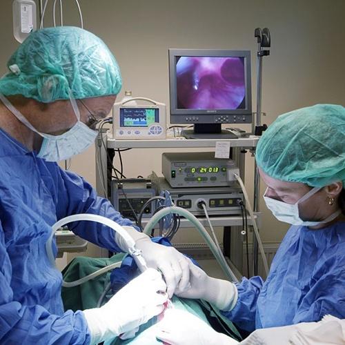 """O femeie a murit, joi noapte, pe masa de operaţie la Maternitatea din Buzău. Tânăra, în vârstă de 24 de ani, din Nehoiu, prezenta malformaţii congenitale şi a suferit un stop cardiorespirator imediat după intervenţia chirurgicală.    Tânăra era internată de mai multe zile din cauza unor afecţiuni ginecologice. """"A intrat în operaţie pe timpul nopţii însă a suferit un stop postoperator. A fost un caz complicat deoarece avea nişte malformaţii foarte rare"""", a declarat medicul Mircea Şuteu."""