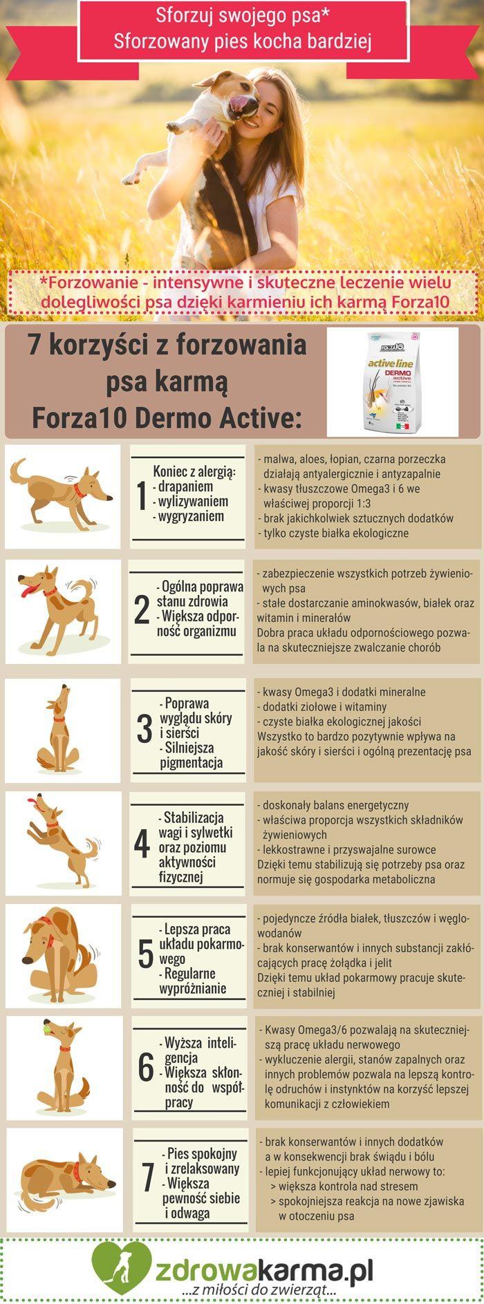 Karmienie psa dobrą karmą ma wpływ na wiele elementów jego życia. Zobacz ile korzyści daje karmienie karmą Forza10 Dermo Active