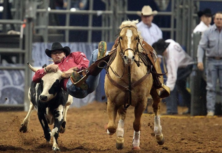 Matt Reeves competes in the BP Super Series III Round 1 Steer Wrestling competition during Houston Livestock Show and Rodeo at Reliant Stadium on Sunday, March 3, 2013, in Houston.    Photo By Mayra Beltran/Houston Chronicle