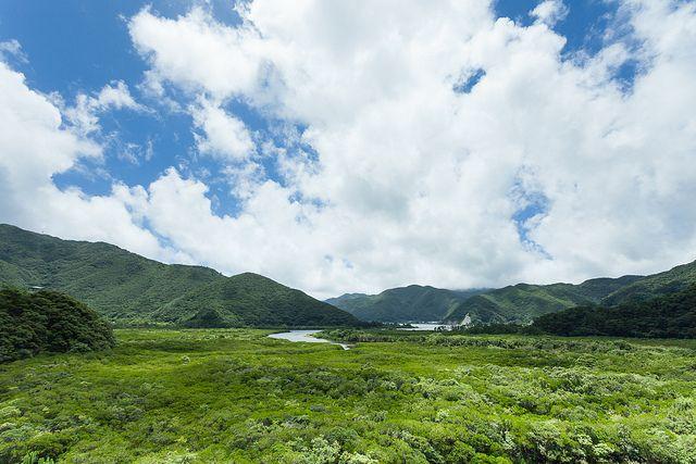 Mangrove field-check -- second kayak destination, Amami Oshima, Japan | Flickr - Photo Sharing!