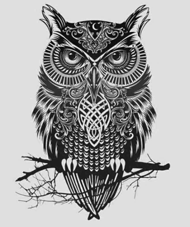 21 Creative Owl Tattoo Designs Men and Women