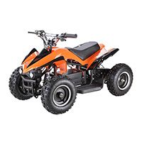 8 Best Kids Atvs Gas Powered Images On Pinterest Kids