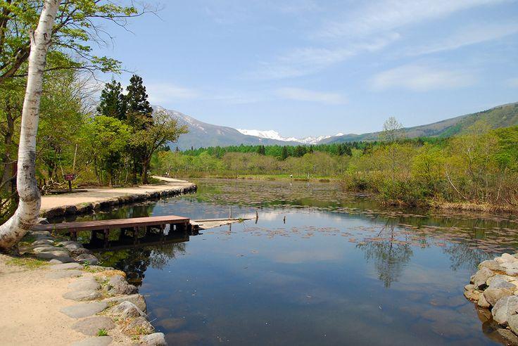 美田舎 − Be INAKA! − Japanese beautiful rural landscape and nature.: Plateau - Nigata Pref. -