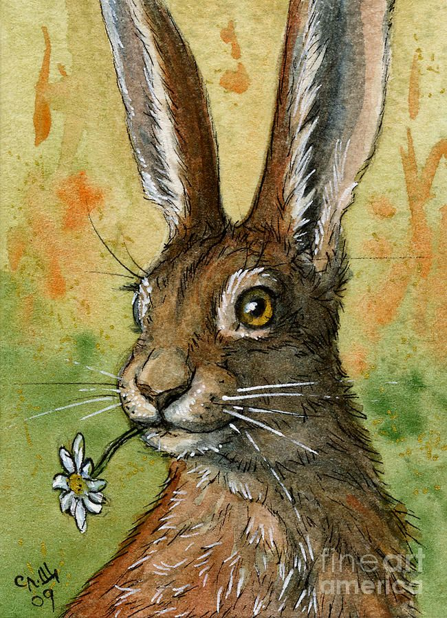 One daisy for you - funny rabbits Painting  - One daisy for you - funny rabbits Fine Art Print