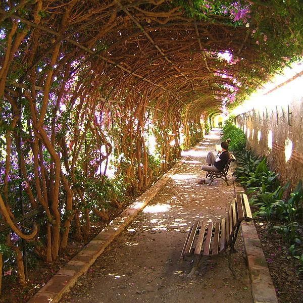 294 best spain things to do places to eat images on for Jardines de monforte