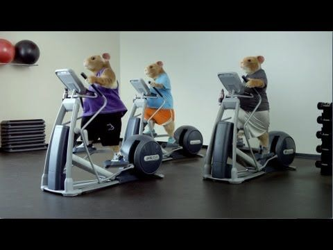 Must Watch --> 2014 Kia Soul Hamster Commercial