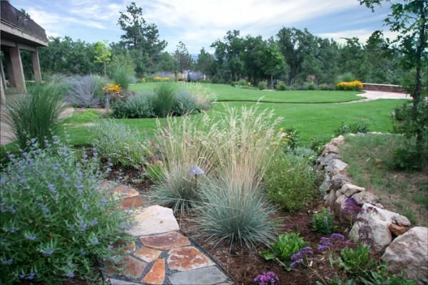 Colorado xeriscaping backyard landscaping pinterest for Garden design xeriscape