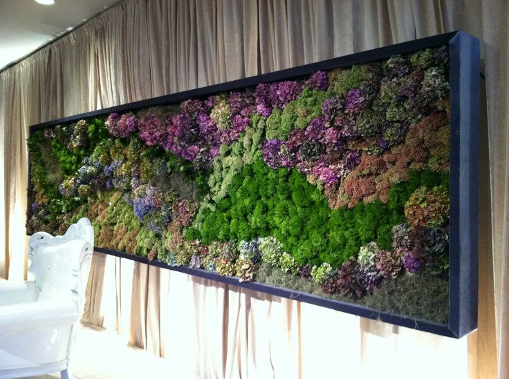 Wall Garden With Succulents