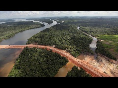 China's Amazon Railway Spells Environmental Disaster