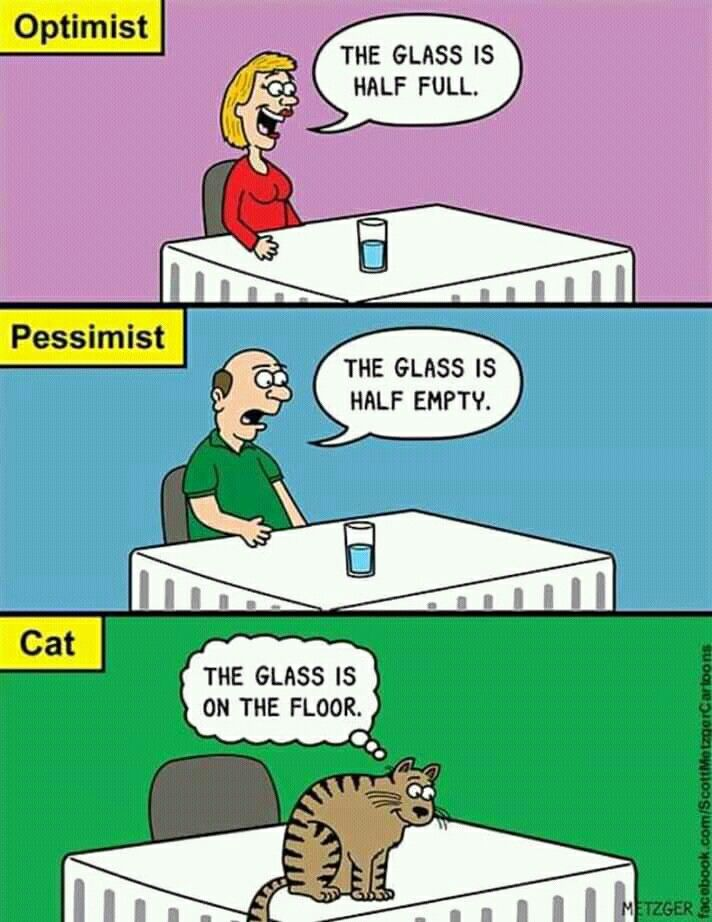 Картинках, прикольные картинки оптимист и пессимист