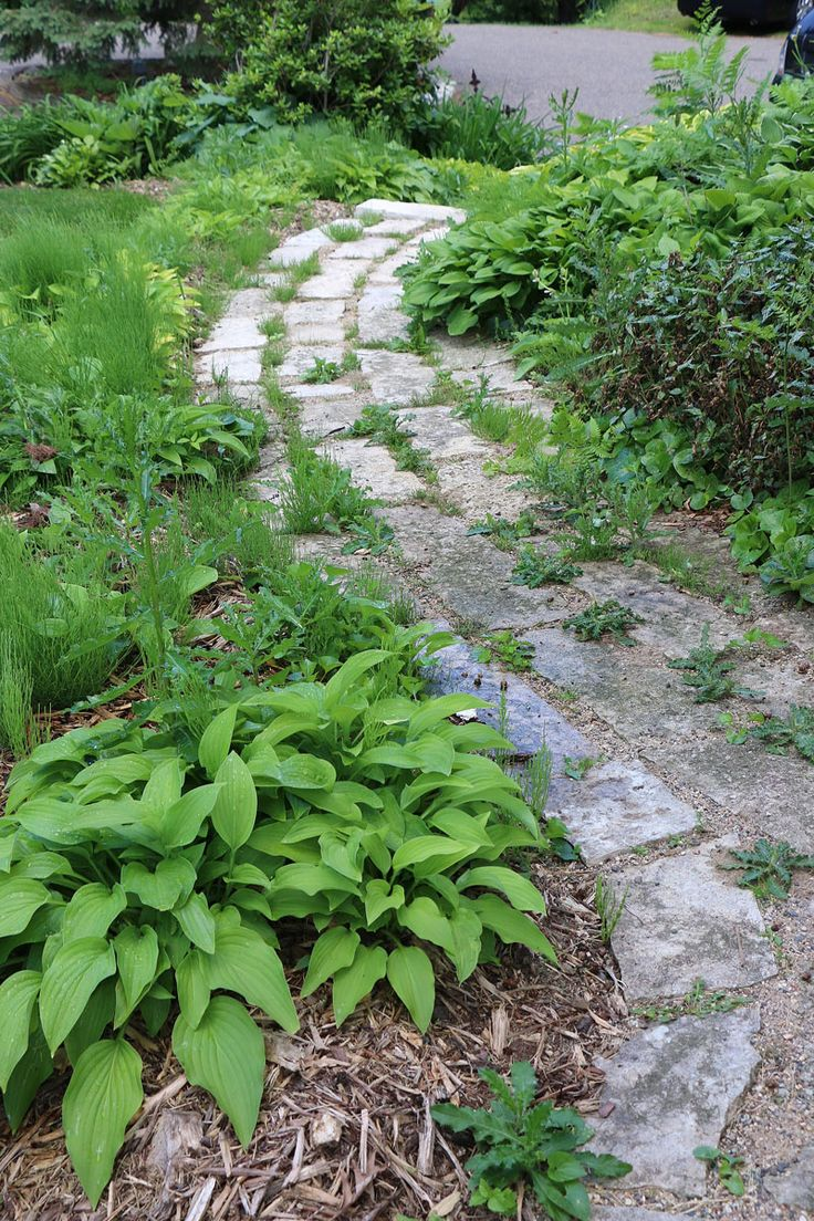 Vegetable garden with covered walkways - Boil Them Weedshere Is My Beautiful Stone Walkway Weeded By Hand And Filled With Sand