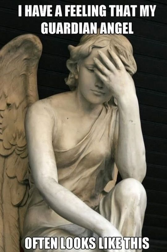My guardian angel // funny pictures - funny photos - funny images - funny pics - funny quotes - #lol #humor #funnypictures