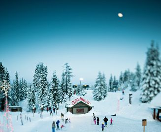 The Peak of Christmas at Grouse Mountain | $41.95