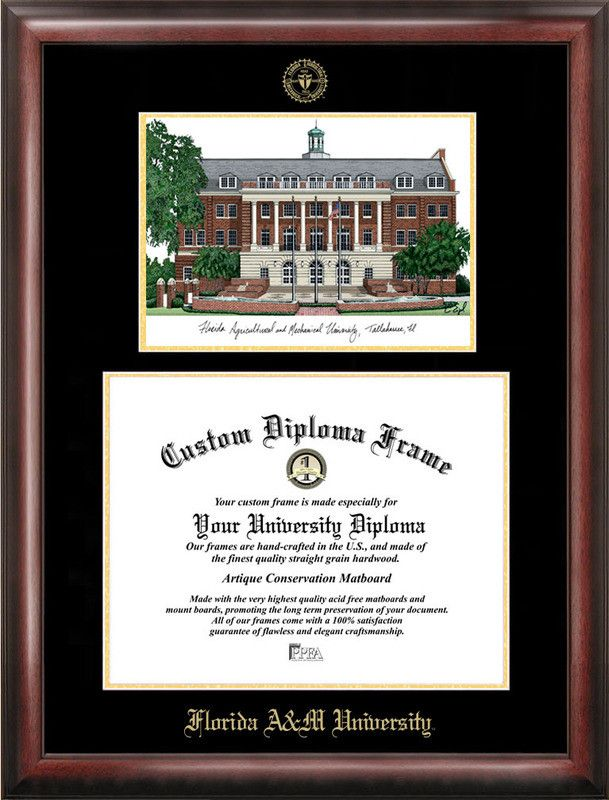 NCAA Florida A&M University Diploma Lithograph Picture Frame