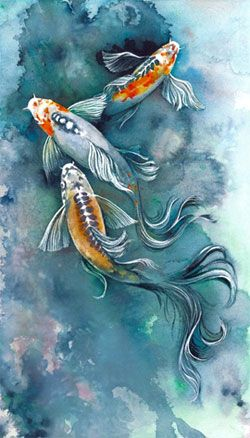 Colorful Koi Fish Drawings | ... it is made in stockfollowing the colorful google chrome logo png