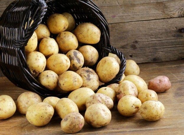 10 fruits et légumes à faire repousser - Les pommes de terre