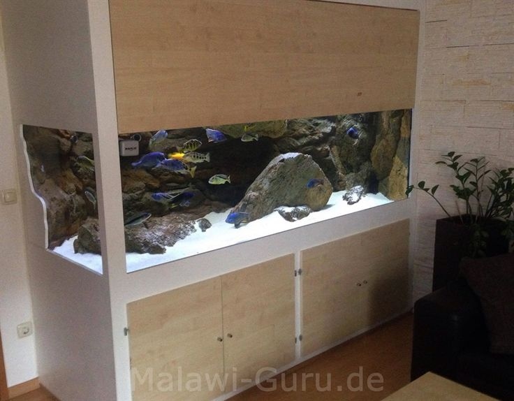 25+ Best Ideas About Aquarium Becken On Pinterest | Terrarium ... Wasserpflanzen Fur Aquarium Auswahlen Pflege