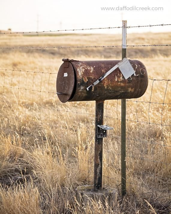 Rustic Country Art Country Wall Decor Mailbox Photography