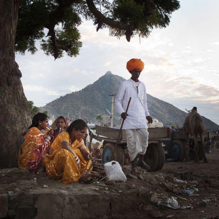Pushkar - Indien.