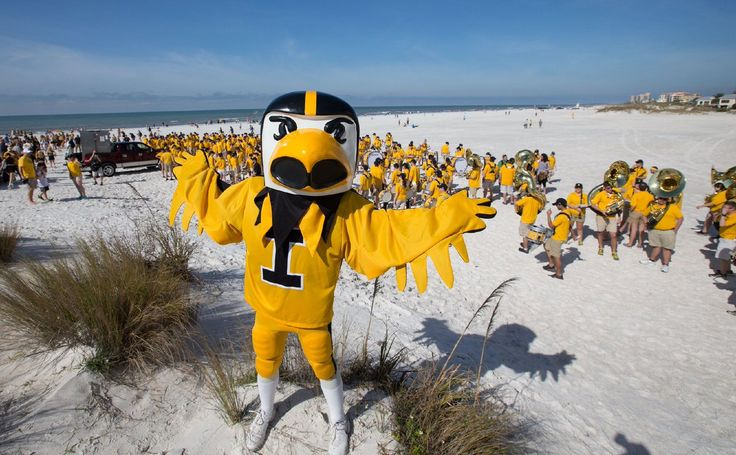 Iowa Hawkeyes at Clearwater beach.
