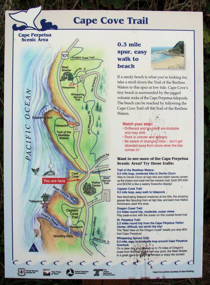 cape perpetua hiking map Google Search