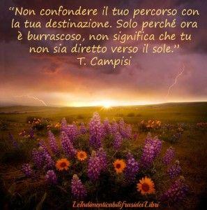 T. Campisi