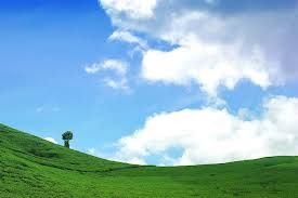 View Teh Garden_alahan panjang_West Sumatera_Indonesia
