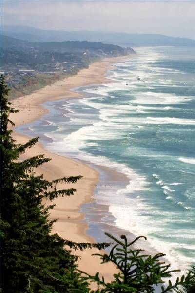 Lincoln City, Oregon | Surfing, campfires on the beach, hiking by waterfalls, walking on the beach by seals, and waking up to the sound of the waves.