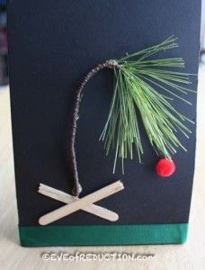 Kid's Nature Craft: Charlie Brown Christmas Tree - Eve of Reduction