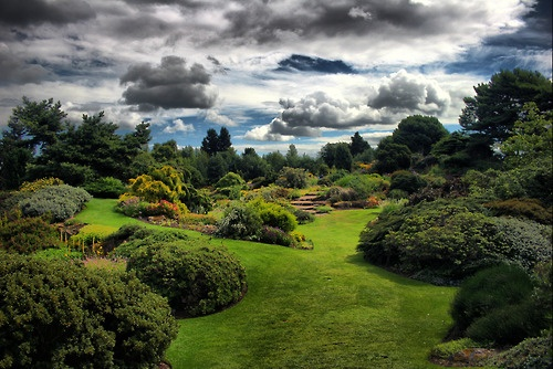 Royal Botanic Garden Edinburgh  - photo by Scott Liddell