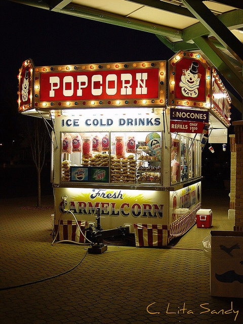 Carnival Food Stand @ Night - Tulip Time Festival - Holland, Michigan by randomroadside, via Flickr