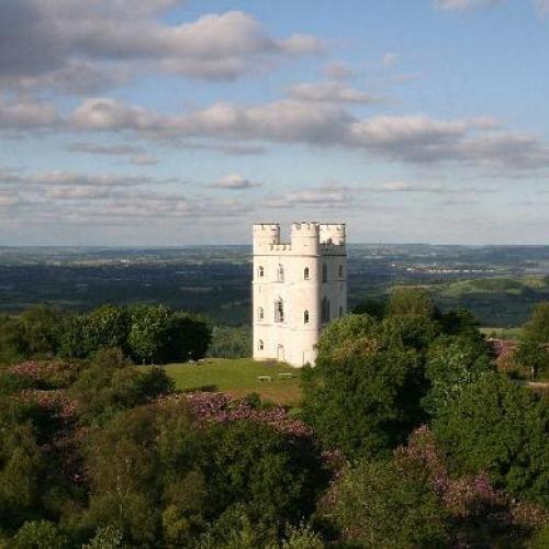Haldon Belvedere (Lawrence Castle) – Castle wedding venue near Exeter, Devon | WeddingVenues.com