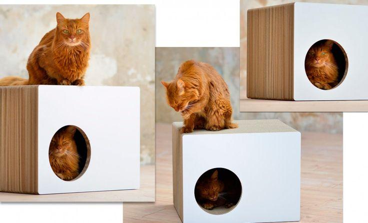 1000 id es propos de griffoir chat sur pinterest - Griffoir chat fait maison ...