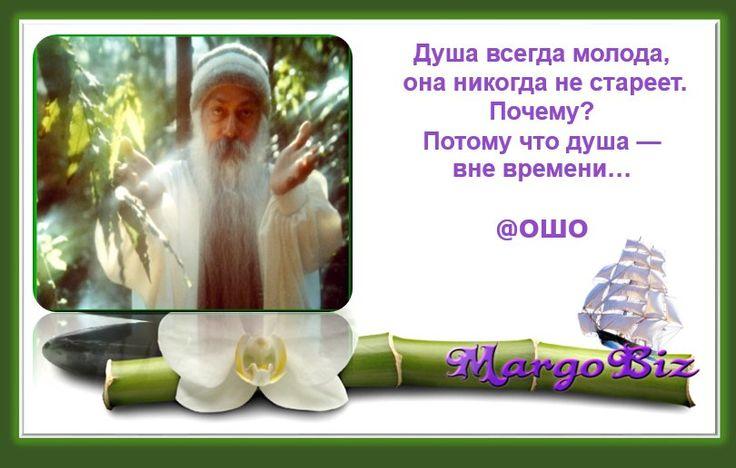 """✨""""Душа всегда молода, она никогда не стареет. Почему? Потому что душа — вне времени"""" @Ошо #зарядисьуспехом #позитив #мотивация #проснись #маргаритараевская #margobiz #мирпозитива #цитаты мудрость #@margobiz"""
