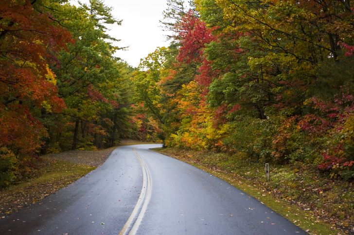 12 Of The Best Road Trips To See Beautiful Fall Foliage