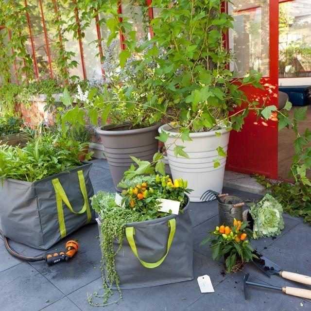 les 19 meilleures images du tableau carr potager sur pinterest jardinage carr potager et. Black Bedroom Furniture Sets. Home Design Ideas