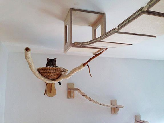 Cat tree 2jpg 575432 Pixels Cats Pinterest A Well Furniture And Videos