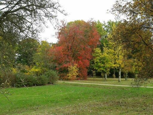 Arboretum in De Lutte