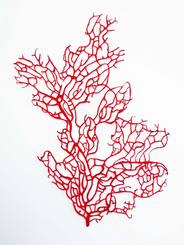 Red Coral Fan, 2010, embroidery thread on paper, box framed, shadow mounted, 78cm x 98cm (SOLD)
