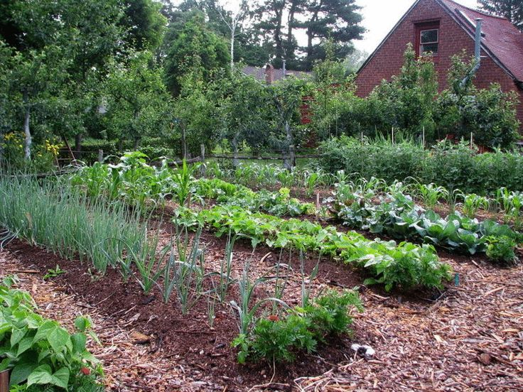 Deep Mulch Gardening , 14 Best Holiday Ts For Green Thumbs Images On Pinterest