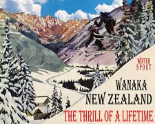 Image result for vintage ski picture new zealand