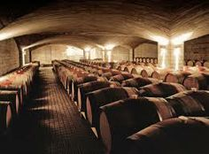 Wine barrels being stored in the Elephant Hill Barrel Room