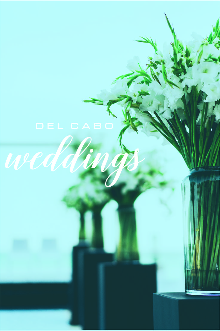 Stunning wedding ideas for your beach destination wedding in Cabo. Amaze yourself with our wonderful pins!   Click on this image to learn more about us!