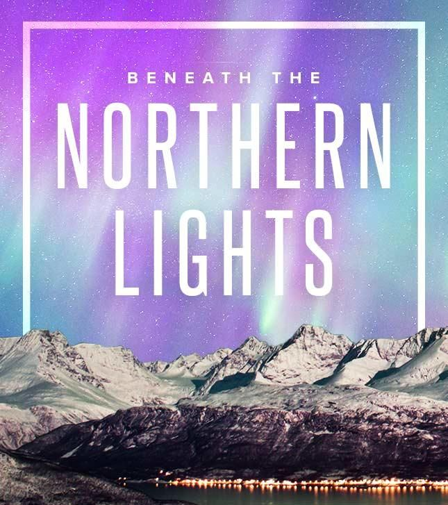 Northern Lights Coupon Book Endearing 454 Best Graphic Design Idea Generator Images On Pinterest  Horse Decorating Inspiration