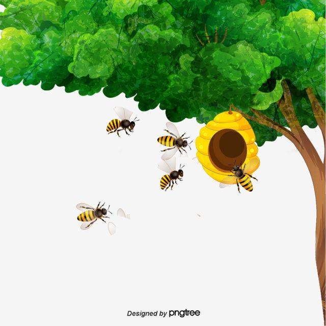 ناقلات خلية النحل نحلة الأشجار خلية النحل Png وملف Psd للتحميل مجانا Bee Hive Bee Tree