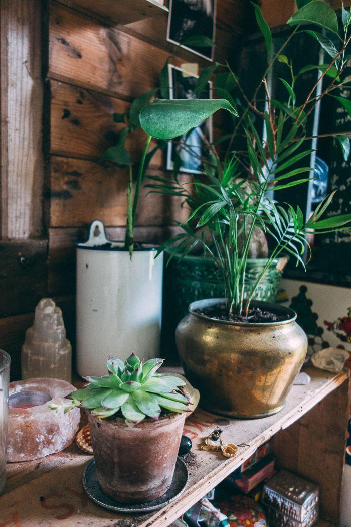 vhord:  upclosefromafar:  jeanetteseflin:  Cabin interior    strictly nature