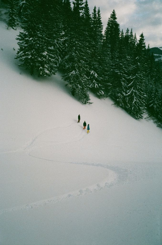 Photos, Winter Snow, Nature, Winter Wonderland, Places, Into The Wild, Christmas Trees, Wanderlust
