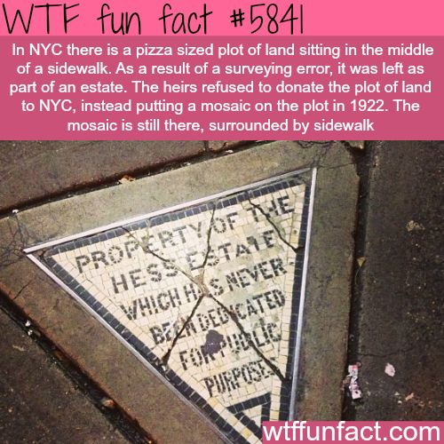 Hess triangle - WTF fun facts