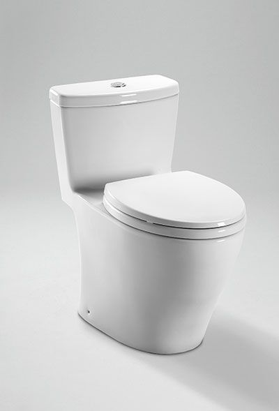 This choice, at least, is easy: the dual flush Toto one-piece. Water efficiency and way easier to clean!