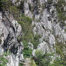 Mountain hiking, Cerna Valley, Baile Herculane